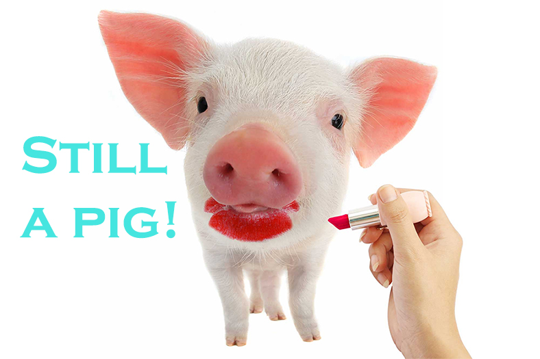 a dressed up US economy does not negate its bloated pig like status