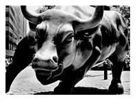 bull_markets1.jpg